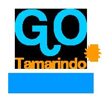 go-tamarindo.com